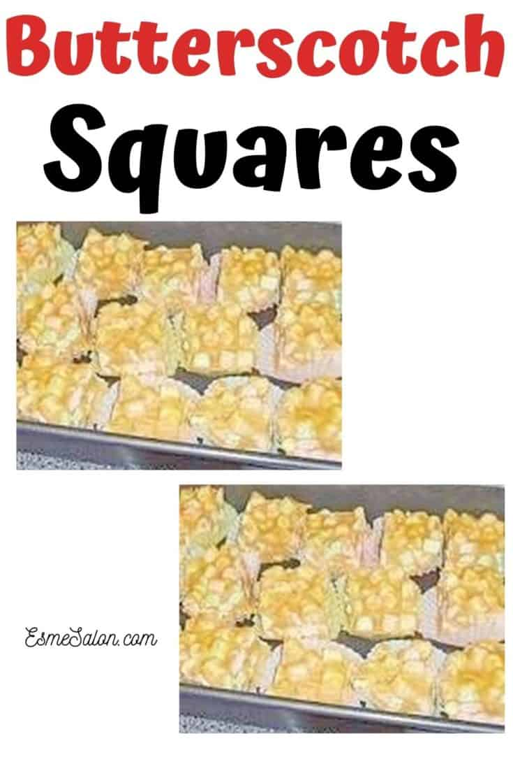 Butterscotch Squares for all ages