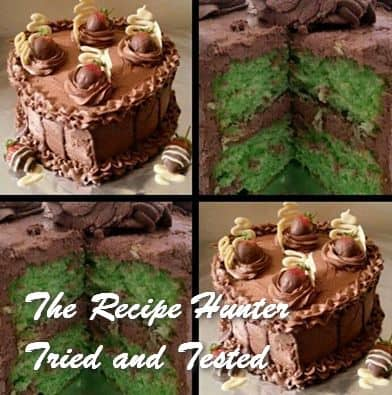 trh-reshikas-mint-cake-with-chocolate-icing