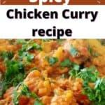 Durban Spicy Chicken Curry