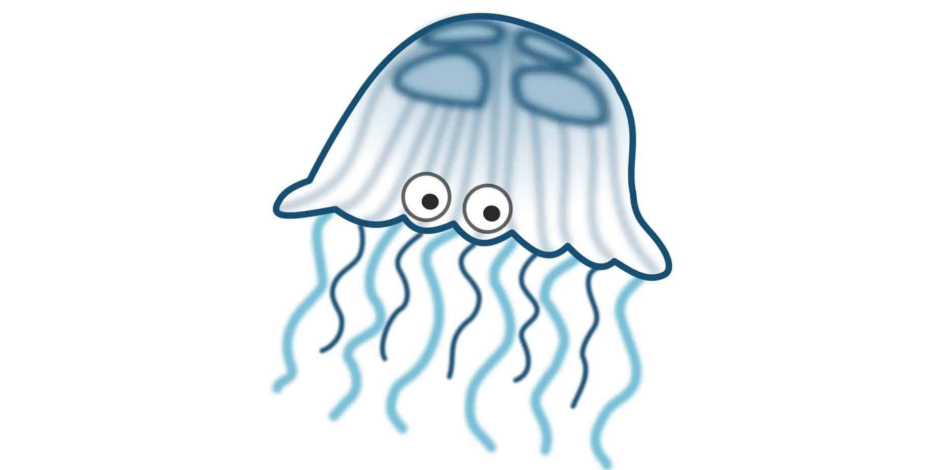 Guest Post: Jelly or Jellyfish?