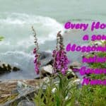 Every flower is a soul blossoming in nature. ~Gerard de Nerval