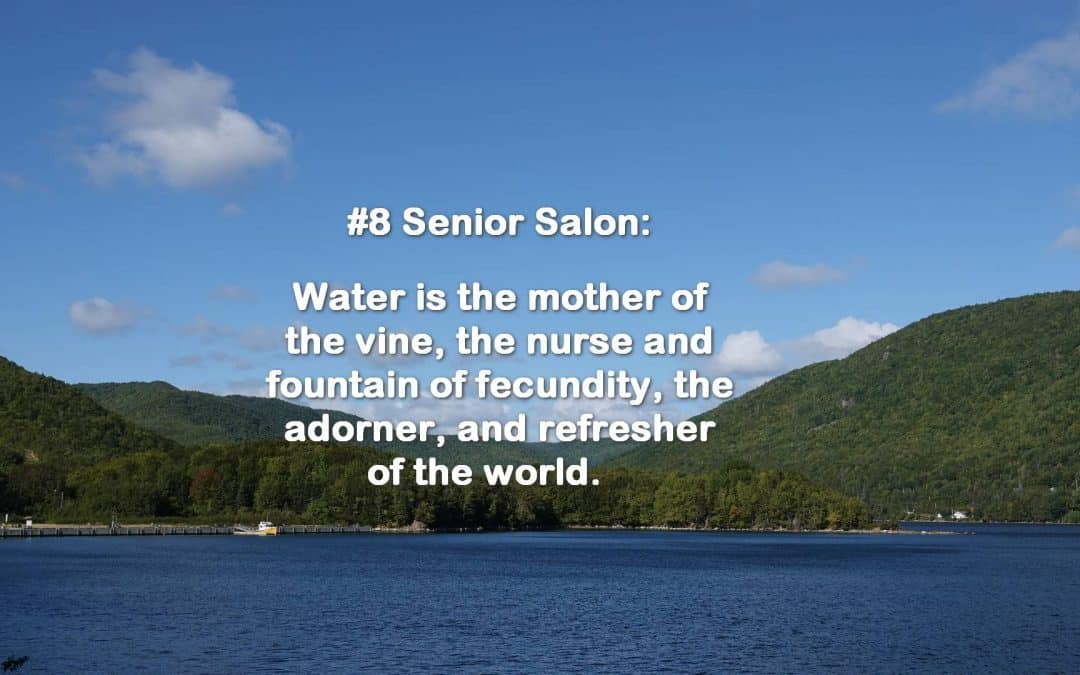 SENIOR SALON 2019 ROUNDUP: Feb 25-March 1, 2019