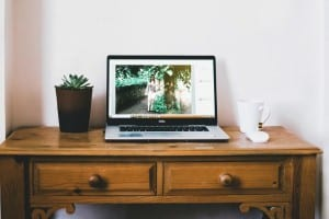 Desk with plant and laptop open and on