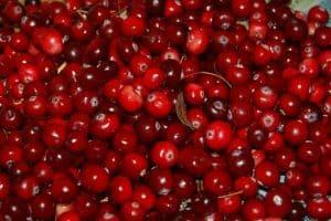 A tub full of Cranberries