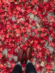 Sidewalk with red Maple Leaves