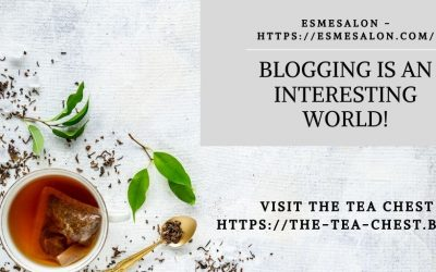 Blogging is an interesting world!