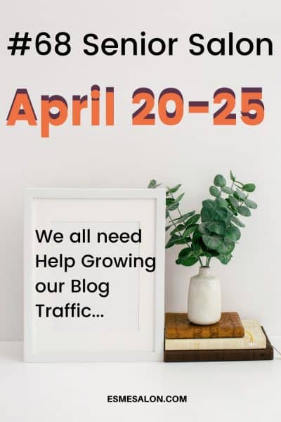 #68 Senior Salon Growing Blog Traffic