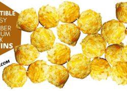 Oat Fiber and Psyllium Husk Muffins