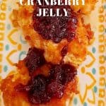 Camembert with Cranberry Jelly as an Appetizer