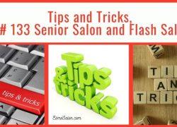 #133 Senior Salon & Flash Sale