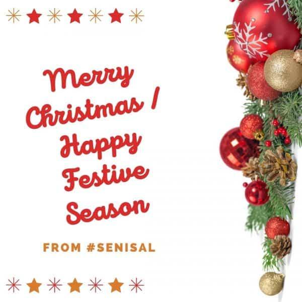 Merry Christmas End of Year #143 Senior Salon