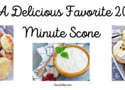 A Delicious Favorite 20 Minute Scone