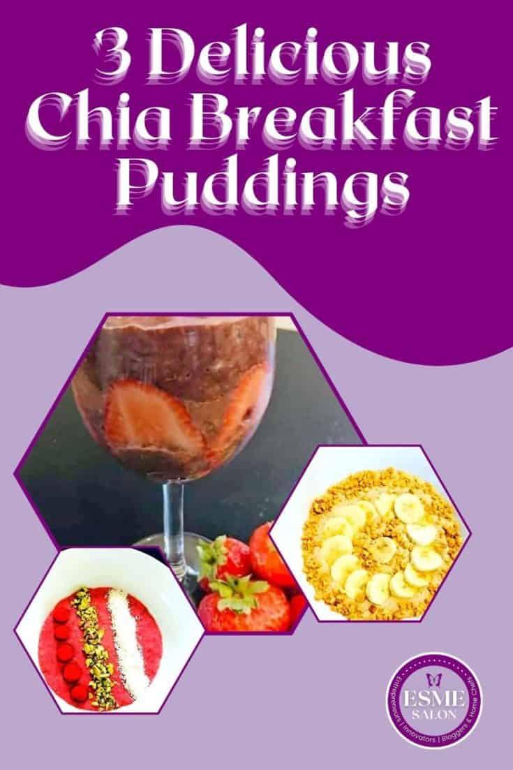 3 chia breakfast meals
